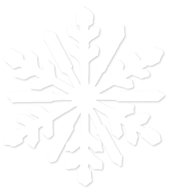 Transparent White Snowflake 5